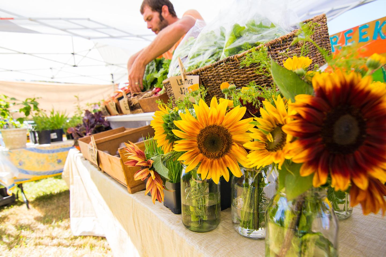 Farmers' Market at Dewitt Center, Auburn